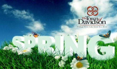 Spring Time with DPR