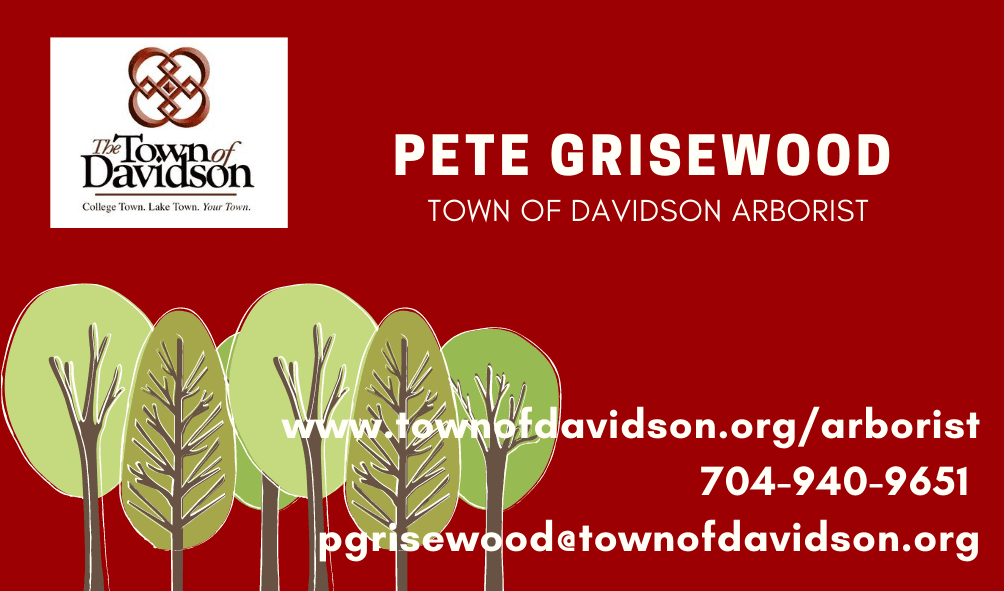 Pete Grisewood business card