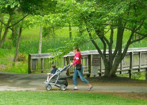 cropped photo mom with stroller