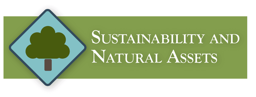 SustainabilityandNaturalAssets
